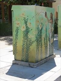 Honeybees, Street Side, San Jose, CA