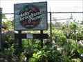 Image for Berkeley Horticulture Nursery