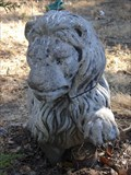 Image for Lion's Rest