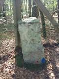 Image for Borne 94, forêt de Fontainebleau - France