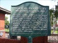 Image for Town Of Plant City 1885