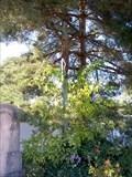 Image for Central Cross Srbec Cemetery, Czechia