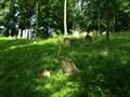 Image for židovský hrbitov  / the Jewish cemetery, Moravský Krumlov,  Czech republic