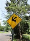 Image for Flying Deer Ahead  -  Edison, NJ