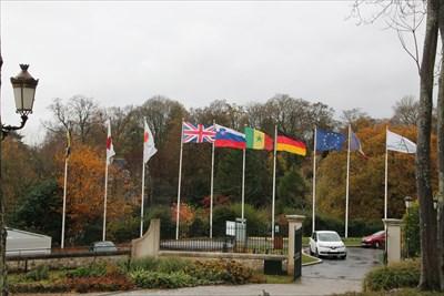 Un drapeau au couleur de la ville au milieu de plusieurs autres