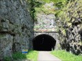 Image for Litton Tunnel, Upperdale, UK