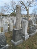 Image for Morris Rosenblatt - Grove Street Jewish Cemeteries - Boston, MA