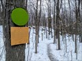 Image for Trillium Woods Park - Kanata, Ontario