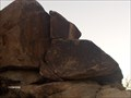 Image for Grapevine Canyon Petroglyphs