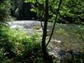 Image for McKenzie River - McKenzie River VP - Oregon