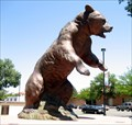 Image for Adams State College Grizzly, Alamosa, CO