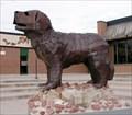 Image for Sabin Bulldog, Colorado Springs
