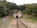 Image for Le tunnel de Saint Rimay - France