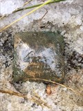 Image for Geodetic Survey Benchmark