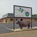 Image for Chamber of Commerce Shorthorn - Plainview, TX