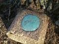 "Image for USGS Bench Mark ""TT 49 DT"" - 1935 (Standing Rock quad, Stewart Co., TN)"