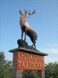 Image for China Grove Taxidermy ELK - Castroville, Texas