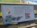 Image for Ice Plant  -  Pebble Beach, CA