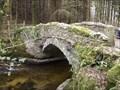 Image for Houndtor Woods Bridge