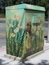 Honeybees, Being Received, San Jose, CA