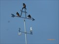 Image for The bakery weathervane-Mt Holly-NJ-Usa