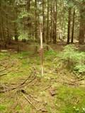 Image for TB 4022-21.0 Obecní les