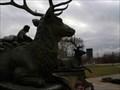 Image for Elk @ the George Washington Monument - Philadelphia, PA