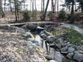 Image for Jamestown Spring - Spring Grove Park (MI)