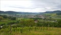 Image for View from the Vineyards - Frick, AG, Switzerland
