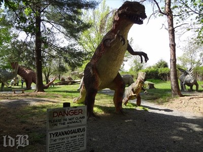 Mom and Jr. Tyrannosaurus cavort in Dinosaur Land.