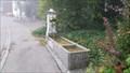 Image for Brunnen Rothenfluhstrasse - Wittnau, AG, Switzerland