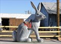 """Image for The """"Here It Is"""" Jackrabbit"""