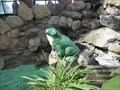 "Image for Wishing Well at Gillette Castle Greenhouse - ""Frog Prints"" - Hadlyme, CT"