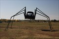 Image for Beetle Black Widow Spider -- Lexington OK