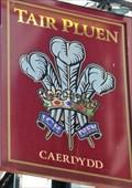 Image for Y Tair Pluen - Caerdydd, Cymru.