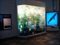 Image for Monterey Bay Aquarium  -  Monterey, CA