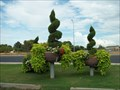 Image for Summer Winds Nursery Topiary - Chandler, Arizona