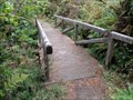 Image for Footbridge - Rocky Point Trail - Patrick's Point S.P. - California