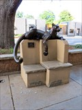 Image for Cougar Bench - Loveland, CO