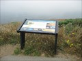 Image for Sea Life in These Waters - Point Reyes National Seashore - Point Reyes Station, CA