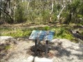 Image for Native Birds - Bird Spotters Walk, Hyams Beach, NSW