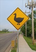 Image for Duck Crossing - Oklahoma City, OK