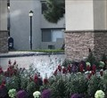 Image for Brookside Apartments Fountain - La Palma, CA