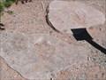 Image for Dinosaur Footprints - Navajo National Monument - Shonto AZ