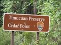 Image for Timucuan Preserve Cedar Point