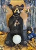 Image for Truthful Bear ~ Gatlinburg, Tennessee