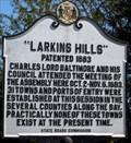 Image for Larkins Hills