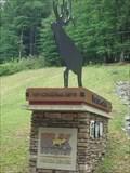 Image for Bull Elk Silhouette - Benezette, Pennsylvania
