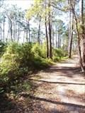 Image for Audubon Bird Sanctuary - Dauphin Island, Alabama
