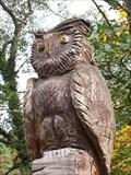 Image for A owl - 07338 Leutenberg/ Thüringen/ Deutschland